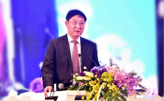 蔡进  2017全国汽车物流行业年会